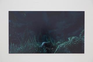 ,Théo CHIKHI, Les amours fabriqués, 2020, impression contrecollée, 107x56 cm.